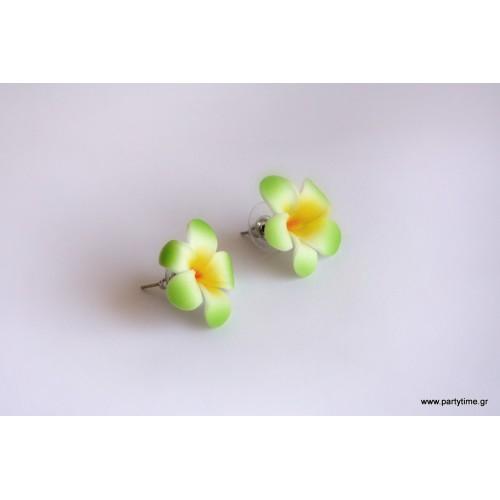 Χαβανέζικα σκουλαρίκια